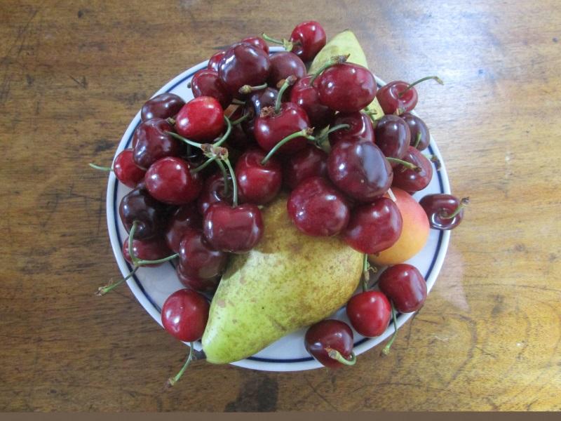 Un regalo del Club de Lectura de La Almunia: una cesta con algunas de las frutas que conocía Altamiras, por ejemplo peras, cerezas y albaricoques.